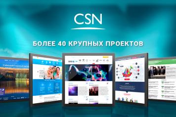 Группа компаний CSN