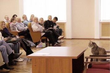 Блог официального символа ВГУ кошки Лизы